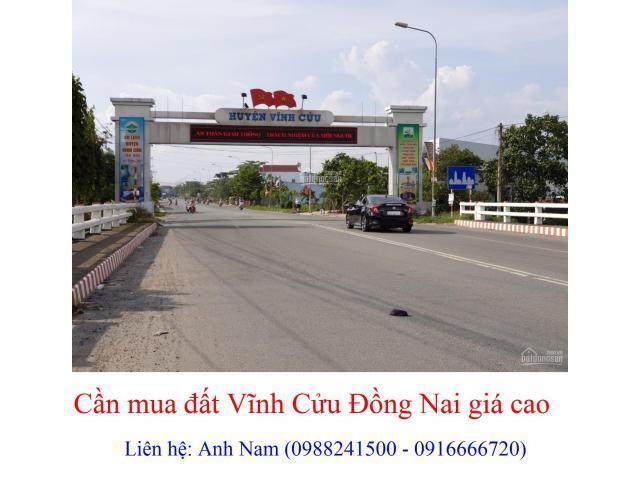 Cần mua đất Vĩnh Cửu, Đồng Nai giá cao, mua chính chủ, thiện chí mua, chịu phí