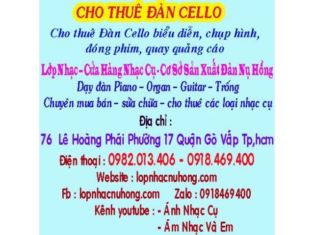 Chuyên Cho Thuê Các Loại Nhạc Cụ, đàn cello - NỤ HỒNG MUSIC