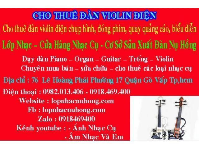 Nơi cho thuê đàn violin điện giá rẻ tại quận gò vấp